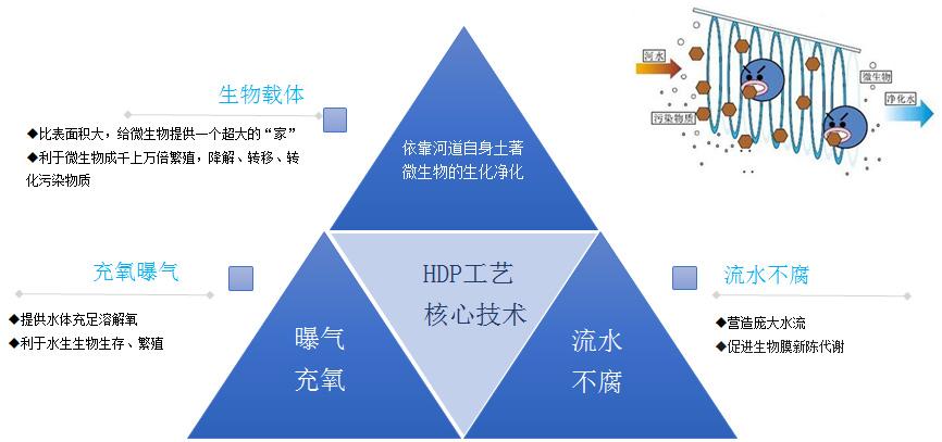 微生态活水直接净化技术(HDP)核心模块