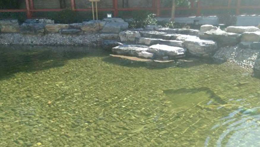 八一学校人工湖水处理-佳业佳境工程案例