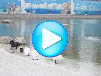 顺驰领海人工湖6