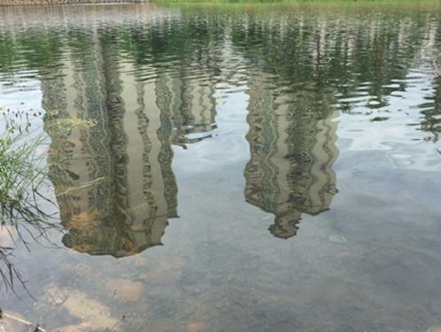河道与湖泊黑臭水体黑臭底泥原位修复