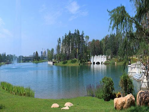 景观水水质长效治理及运营维护技术