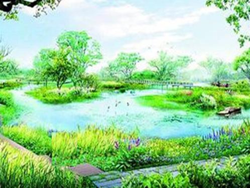 乡村纳污坑塘速效治理技术HDP活水生态塘