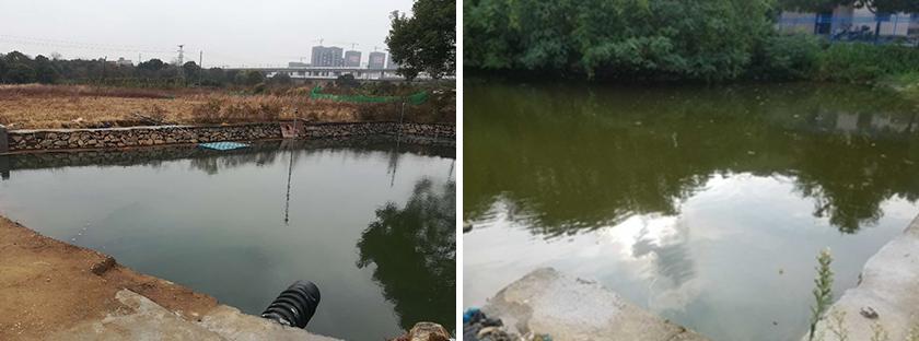 望城镇三联村曹家、毛家生活污水处理工程-佳业佳境工程案例