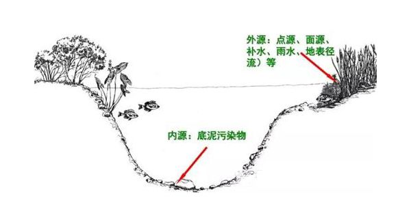 黑臭河道生态治理——水体生态系统重构