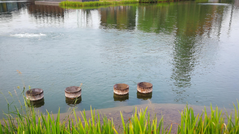 北京2022年冬奥会组委会驻地首钢秀池水质提升工程