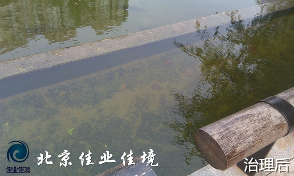 北京观湖国际小区使用生态控藻素后