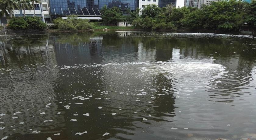 海口鸭尾溪黑臭水体生态修复工程-佳业佳境工程案例