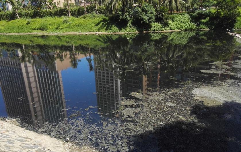 海口黑臭水体中试治理大比武-佳业佳境工程案例