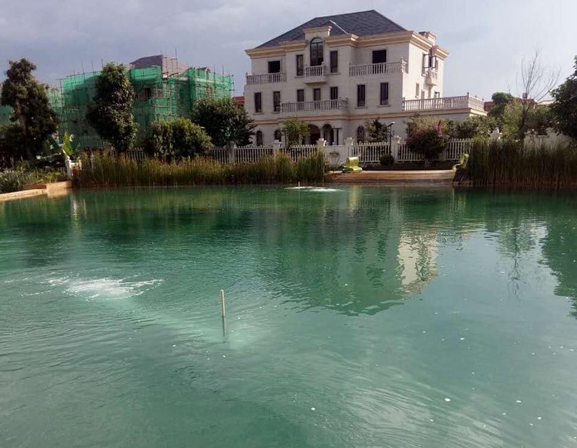 世外桃源小区景观湖水质提升工程-佳业佳境工程案例